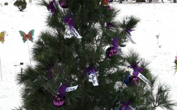 Woodlawn Memorial Park's Angel Tree: Remembering Children Everywhere