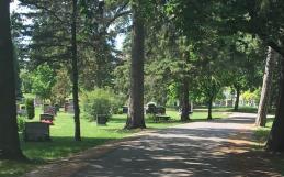 Take A Walk Through Woodlawn Memorial Park