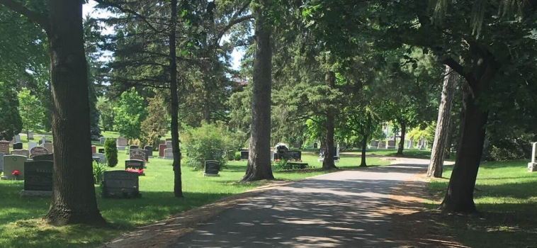 Take A Walk Through Woodlawn Memorial Park